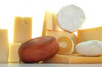 different types of cheese on a white background