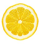 Section lemon. The detailed photo on a gleam. It is isolated on a white background