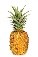 One pineapple on white background.