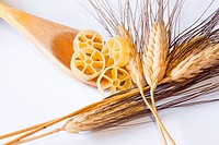 closeup of italian food and natural spike on white background