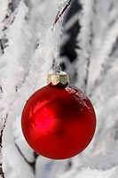 a red bauble in snowy winter landscape