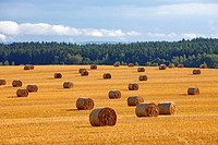 czech republic, southern bohemia - bales of hay