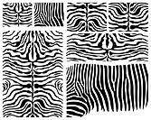 A zebra skins collection...