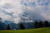 View fom the FIRST mountain in Switzerland summer time
