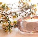 wellness concept with candle and blossom