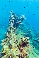 Shipwreck underwater. Sunken gunboat at Lusong Island