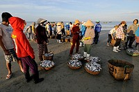 Vietnam, Long Hai, unloading fishing boats on the beach of Long Hai