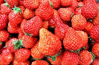 Fresh red strawberry fruits in a pile
