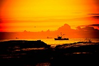 A fishing boat cruises by the shore at dawn in Wollongong, NSW, Australia