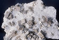 Minerals - Cubic Pyrite and quartz.