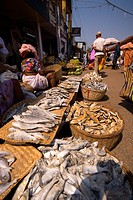 Fish stall, Mapusa Market, Goa, India, Asia