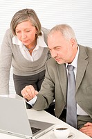Professional senior businessman looking at computer with woman colleague