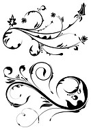 Floral scroll, element for design, vector illustration