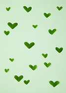 Heart_shaped leaves Ecology image