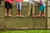 Group of boys on fence                                                                                                                                ...