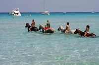 France, Corsica, Saleccia, horse ride on the beach ...