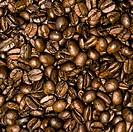 coffee crop texture or background