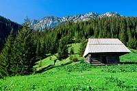 Hut on high mountain meadow of the Tatra Mountains in the Tatrzanski National Park, Poland.