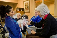 Nursing home residents in Mission Viejo, CA, play with specially_trained therapy dogs brought by volunteers to provide companionship and pleasure