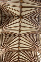 The vaulted celiing of Exeter Cathedral is the longest gothic vault in the world.