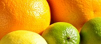 Closeup of mixed citrus fruit taken in sunlight