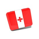 medic case for first aid with red cross
