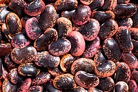 photo shot of color beans background