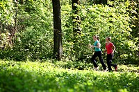 Recreational runners, young women, 25-30 years, jogging on a forest path in sunny forest
