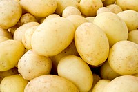 Background from fresh young potatoes