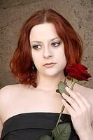 Der Blick der Rose