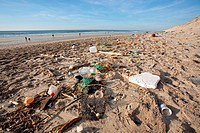plastic bottle and other trash on atlantic beach
