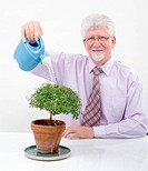 senior man watering a small tree