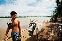 Man waiting with his horse by a Irrawady river