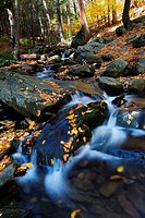 Autumn creek with hiking trail and rocks in woods with colorful foliage.