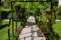 View of ornamental garden , with arbour, surrounded by vines, path lined with flowers, and grass lawns, Renaissance villa, Todi, Umbria, Italy