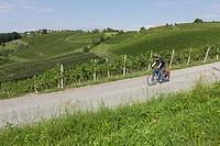 Slovenia, Maribor, Mature man cycling through vineyard
