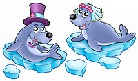 Wedding with cute seals _ color illustration.