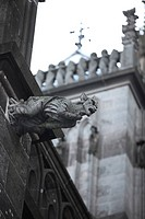 Gargoyles on Cologne Cathedral, UNESCO World Heritage Site, Cologne, North Rhine-Westphalia, Germany, Europe