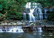 Liffey Falls is collectively a series of four distinct cascades and resides in the cool temperate rainforests of the Great Western Tiers near Delorain...