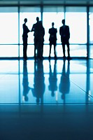 Silhouette of business people standing at lobby window (thumbnail)