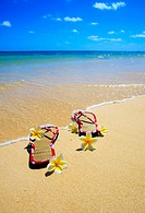 a pair of sandals and plumeria blossoms on a Hawaii beach