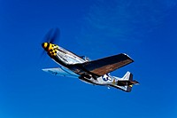 A P_51D Mustang Kimberly Kaye in flight.