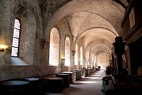 Old arches on vineyard in the Rheingau, Germany