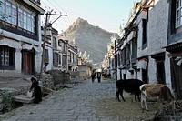 Alley in the old town of Gyantse with a view of the Dzong, Gyantse, Gyangze, Tibet, China, Asia