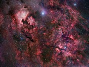 Northern Cygnus