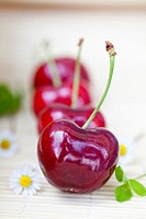 Vignola red Cherries