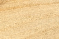 Wood texture, horizontal shape, high resolution