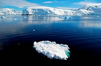 small ice floe in the sea, with antarctic behind it