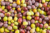 Background texture pattern of freshly harvested green and black red olives close_up.