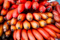 red banana fruits in the tropical market